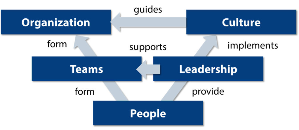 an agile transformation covers the domains of people, teams, leadership, culture and organization