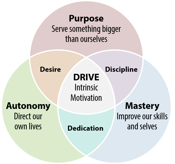 Drive - autonomy, mastery, purpose - My Business Agility www.mybusinessagility.com
