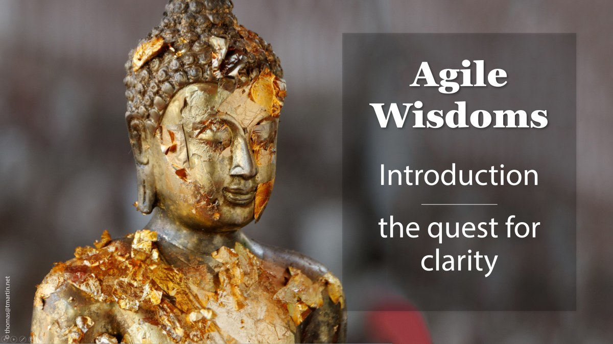 Agile wisdoms: Introduction – the quest for clarity